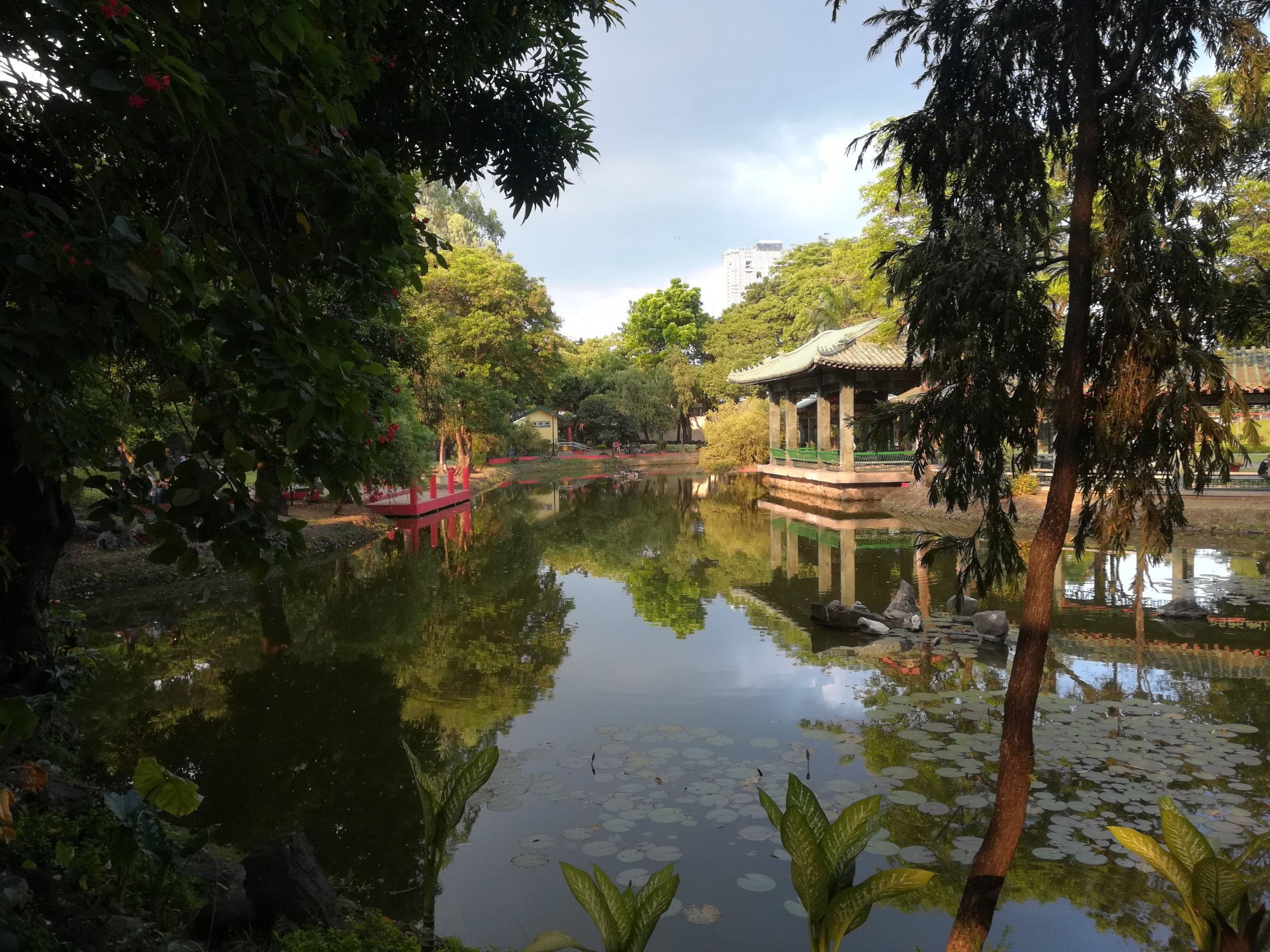 JARDIN-CHINO-PARQUE RIZAL-MANILA