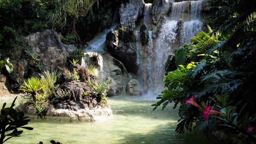 Isla -Guadalupe-Antillas-Francesas