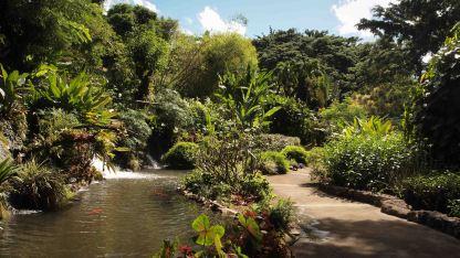 Jardin-Botanico- Deshaies-Guadalupe