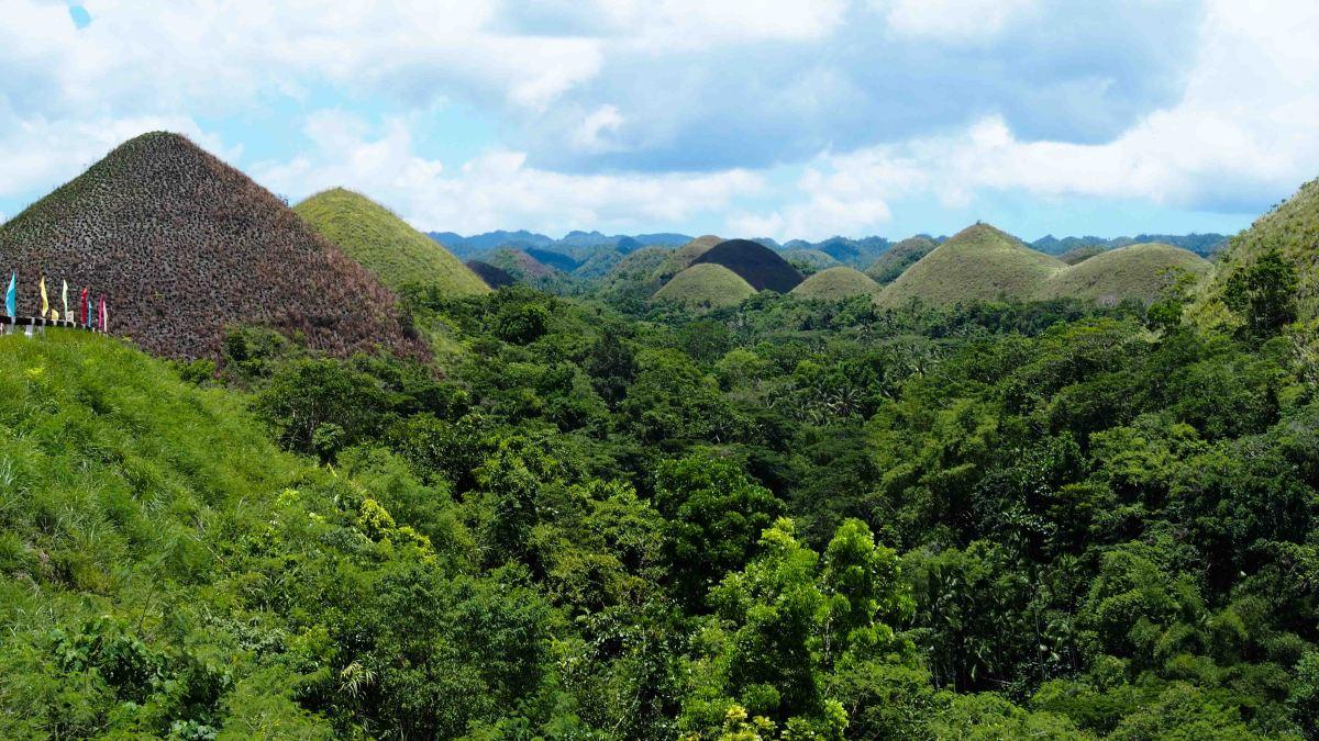 Recorriendo la Isla de Bohol. Chocolate Hills, Tarsiares yplayas