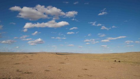Jinetes Desierto Gobi