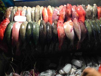 Mercado Pescado Labuan Bajo