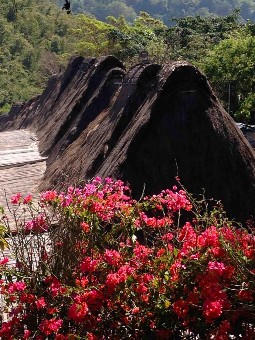 Bena-Isla-Flores-Indonesia
