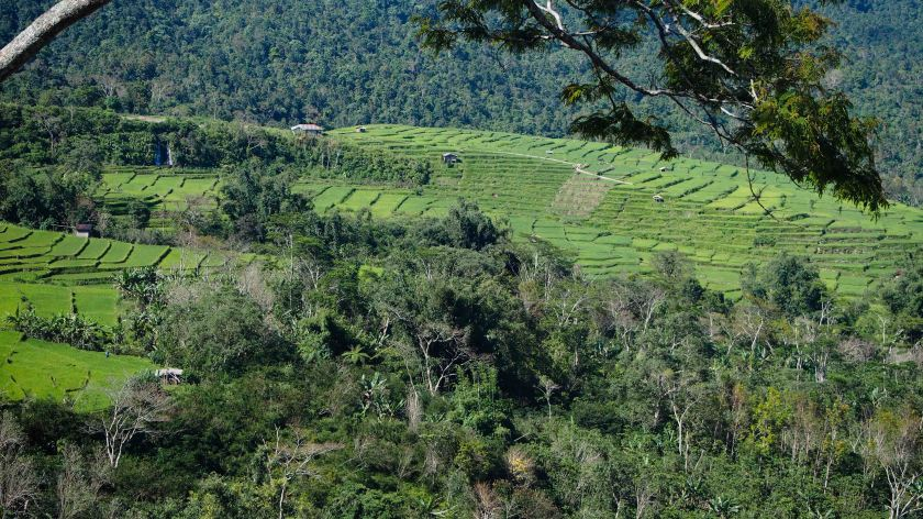 Rana Mese Sambi Rampas East Manggarai Regency Nusa Tenggara Oriental