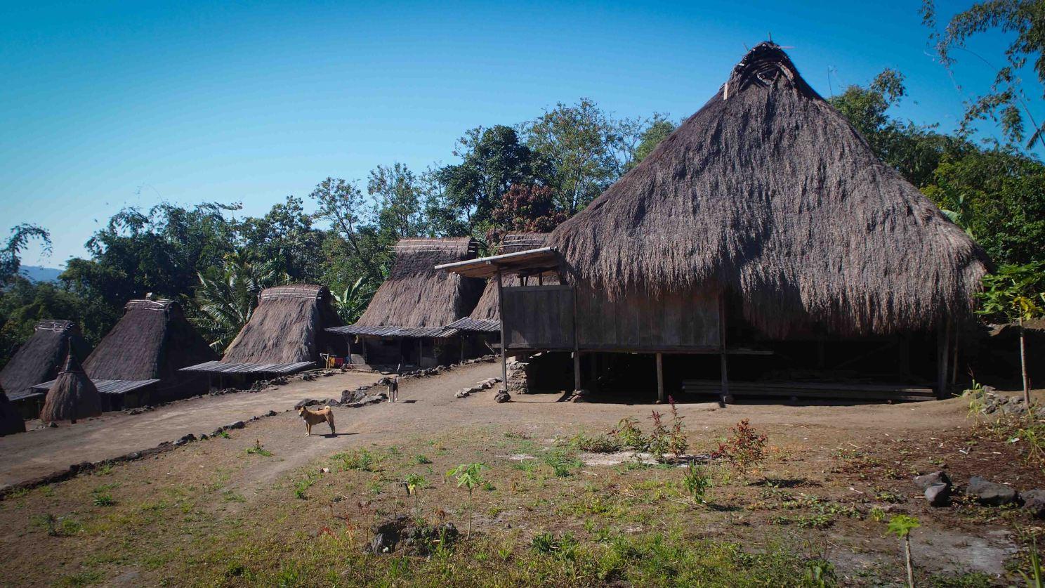 Luba-Isla-Flores-Indonesia