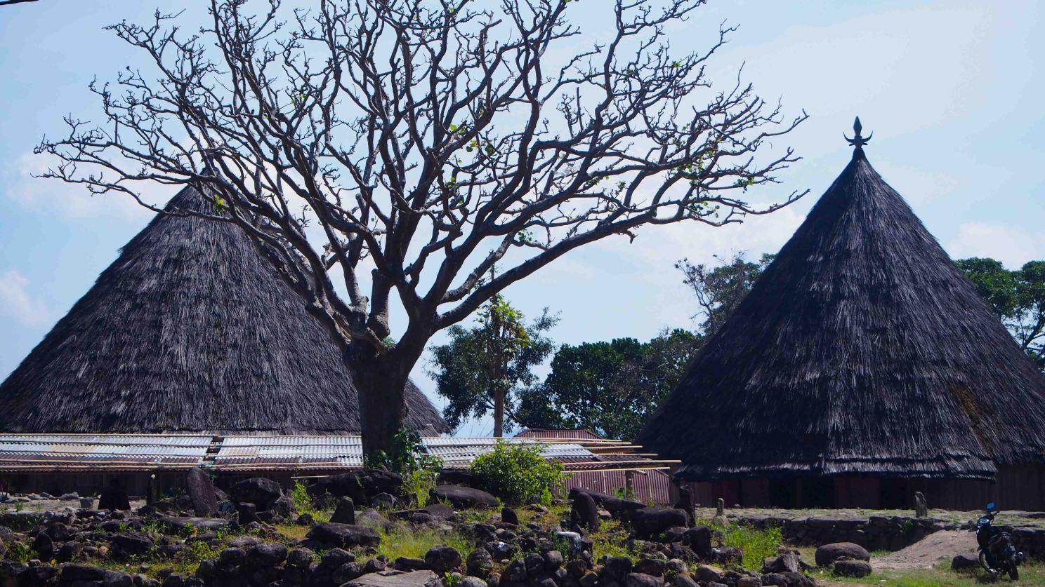 Ruteng Puu