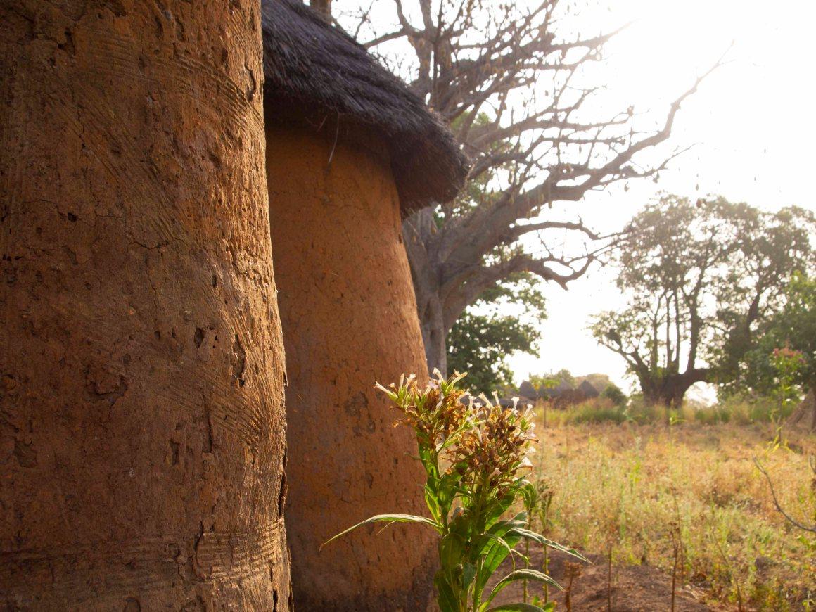 Pueblo-Somba-Benin