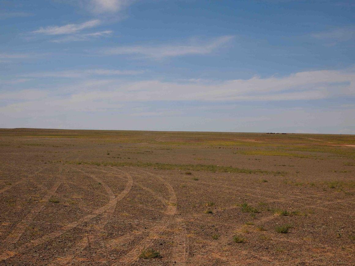 viajar-desierto-gobi-mongolia