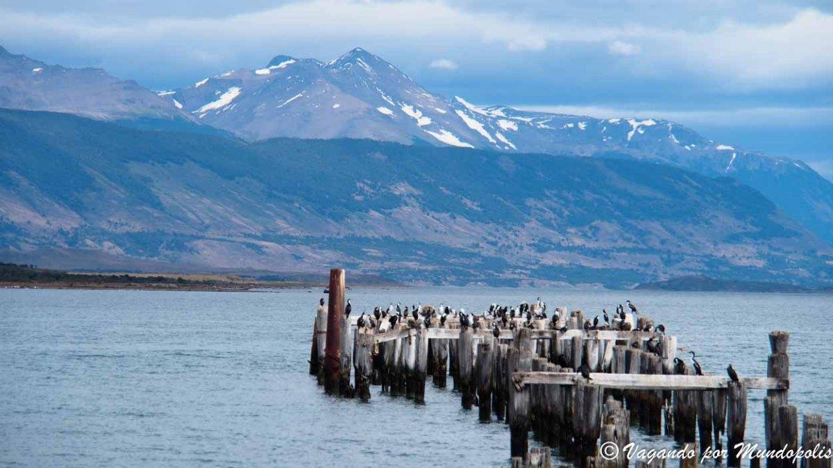 Puerto Natales Que ver y Que hacer en las Capital de UltimaEsperanza