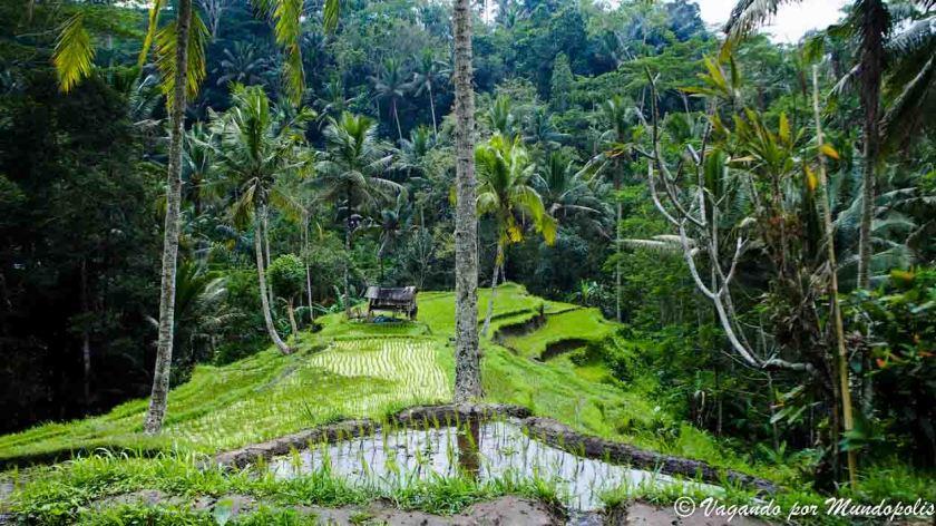 Pura-Gungung-Kawi