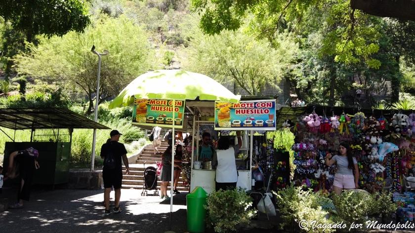 parque-metropolitano-santiago-de-chile